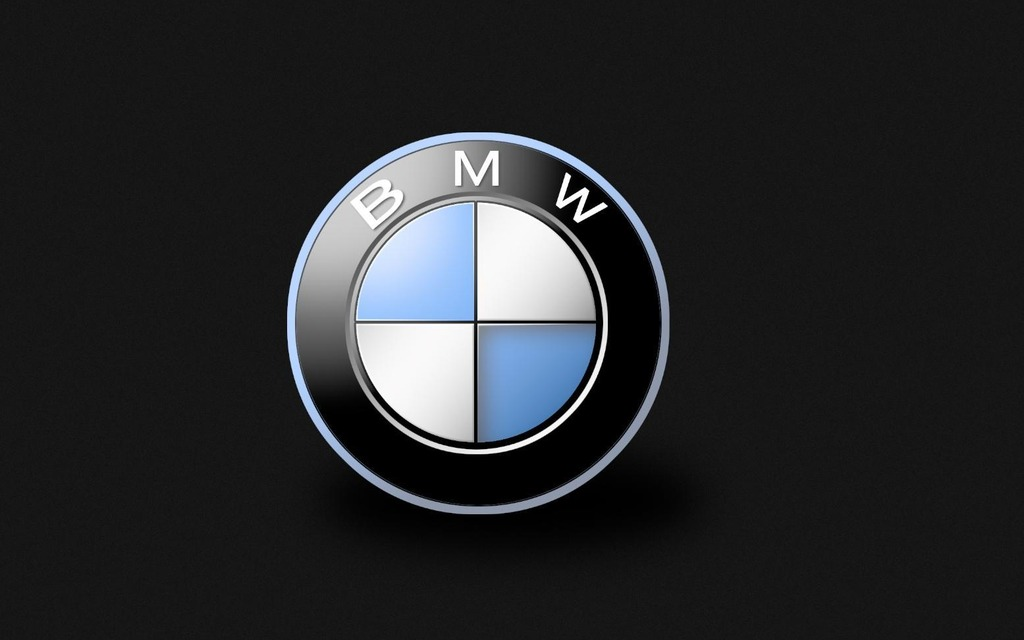 Sport Utility Vehicles >> BMW recalls more than 30,000 SUVs to fix oil leak that can knock out power assisted braking - 1/1