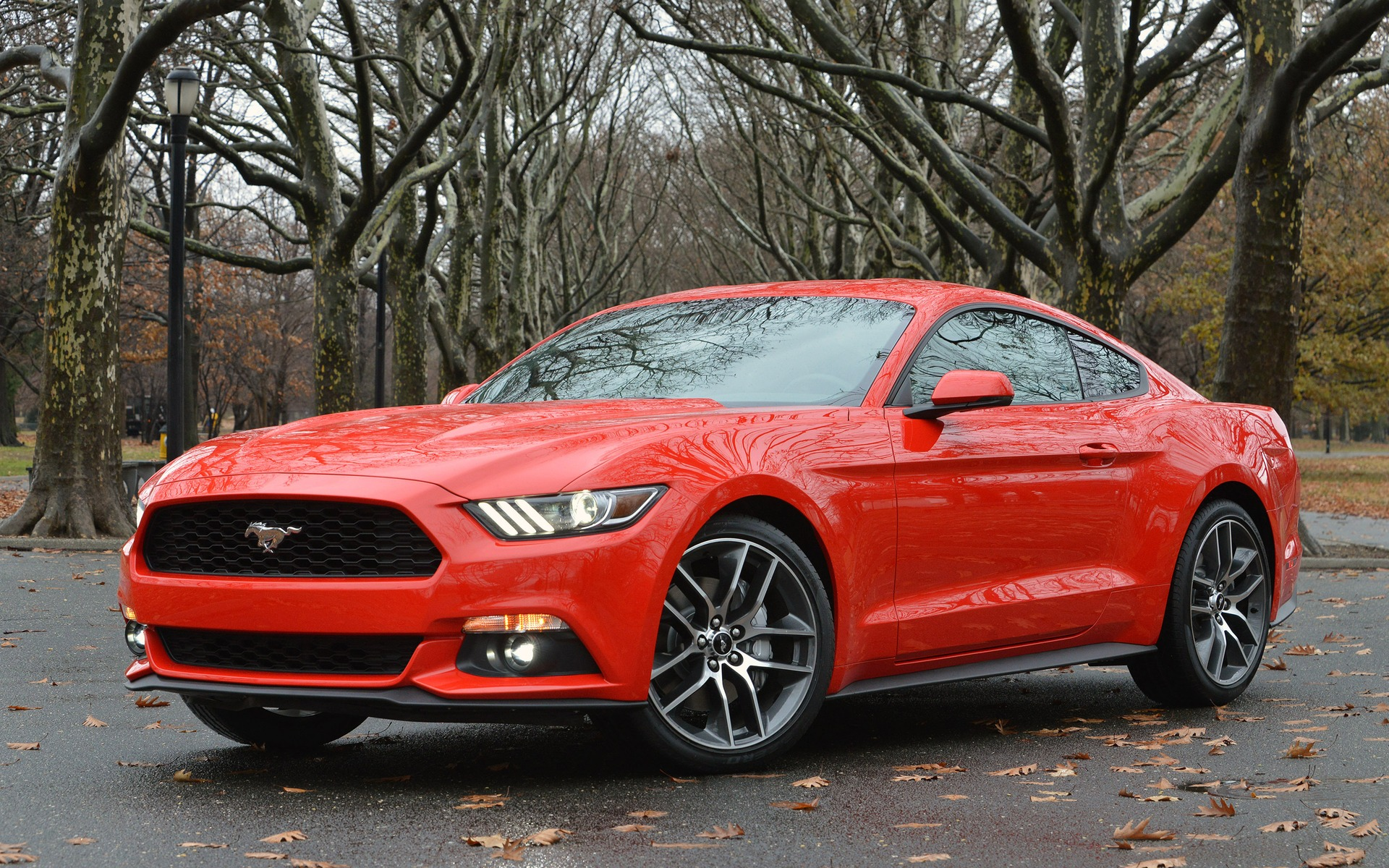 Top 10 Nicest Ford Mustangs