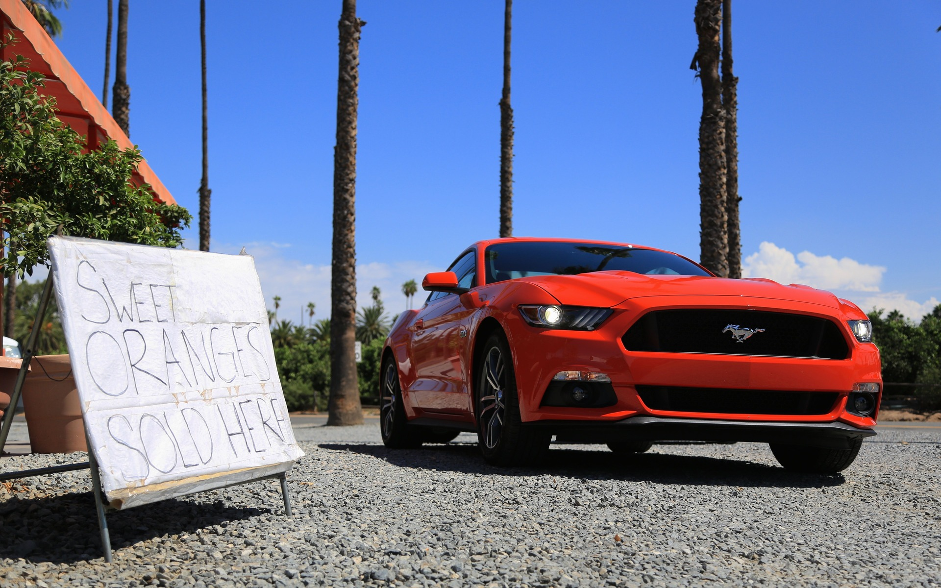 2015 Ford Mustang A Brave New World 24 30