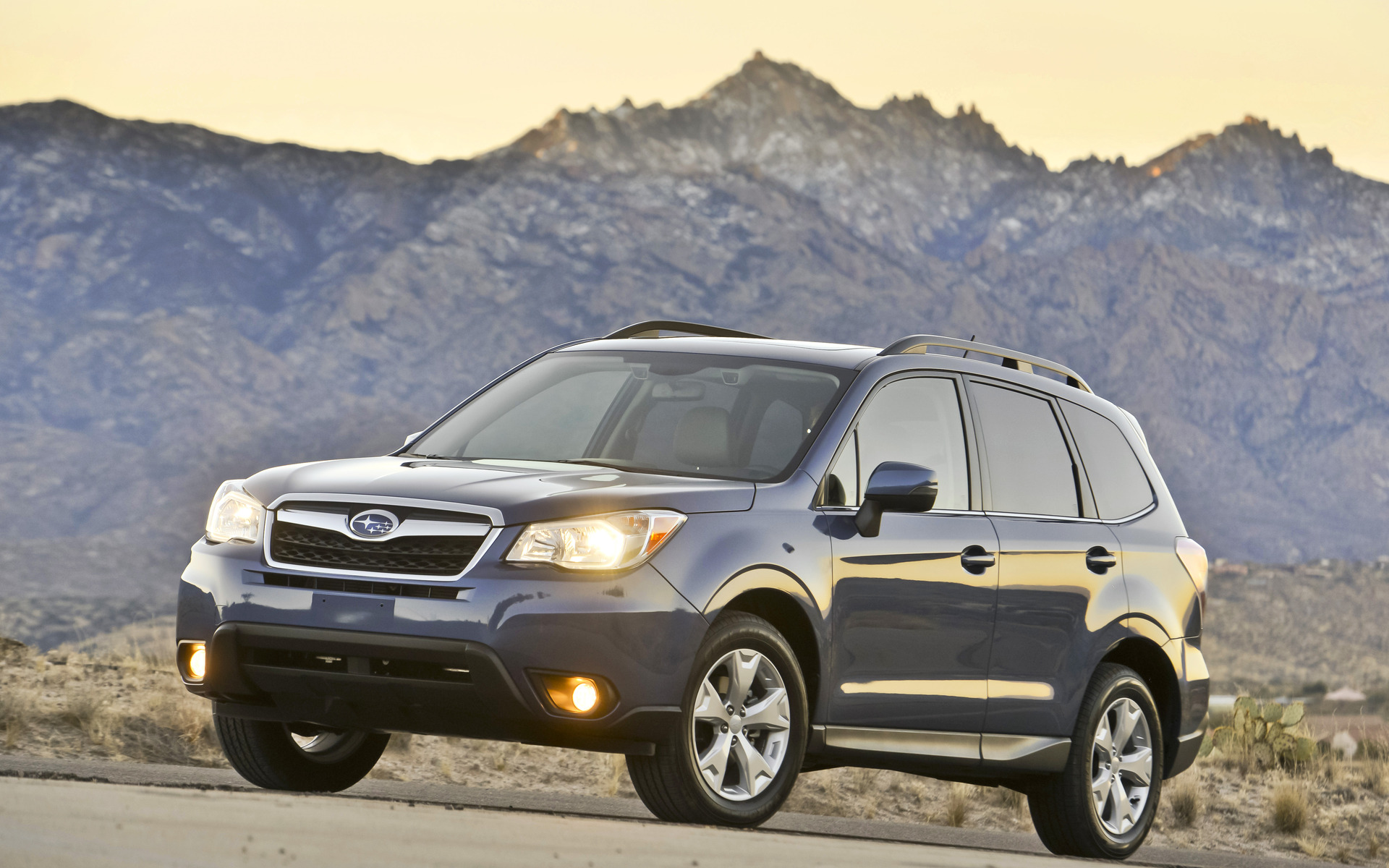 how to become a forester in canada