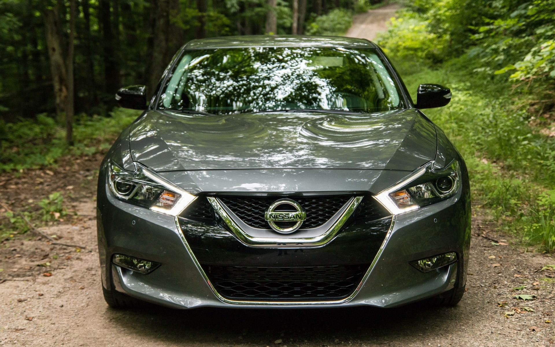 2016 Nissan Maxima - The front fascia is really agressive