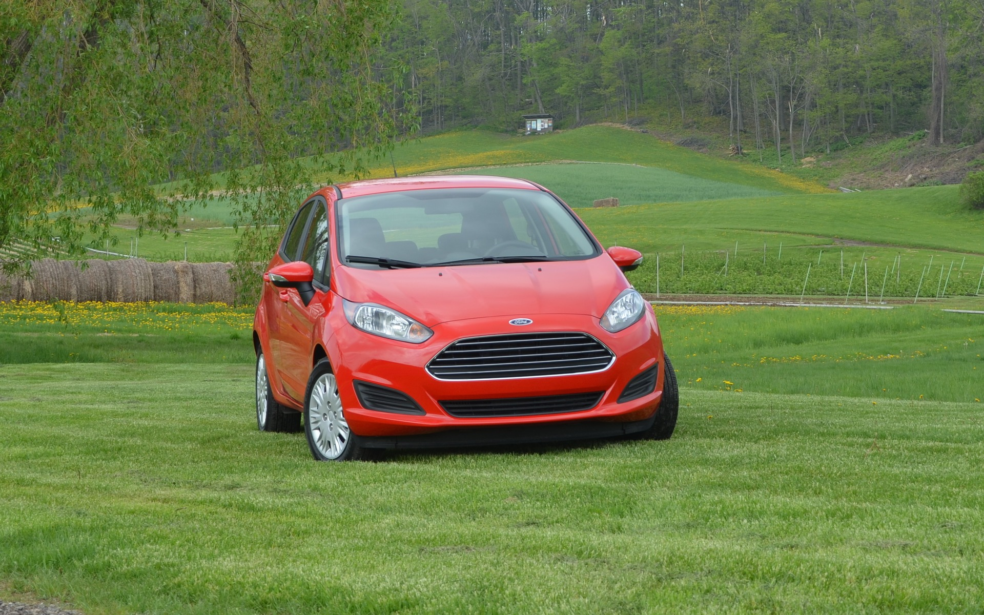 Ford Fiesta SFE