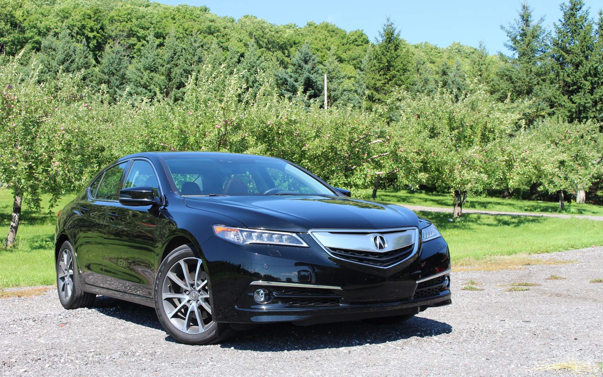 2016 Acura TLX Elite SH AWD Seeking a Long term Relationship The