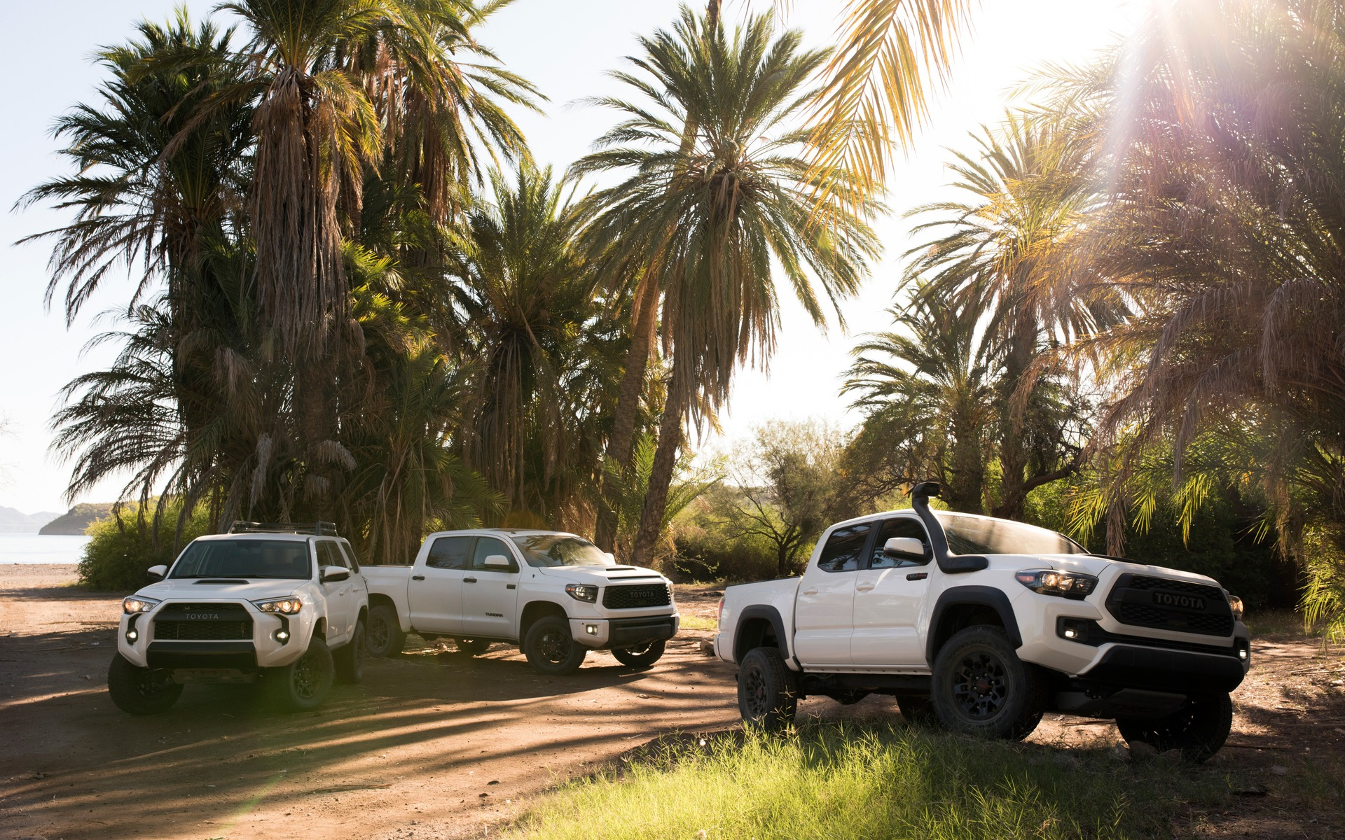 <p>La gamme des camions Toyota TRD Pro 2019</p>
