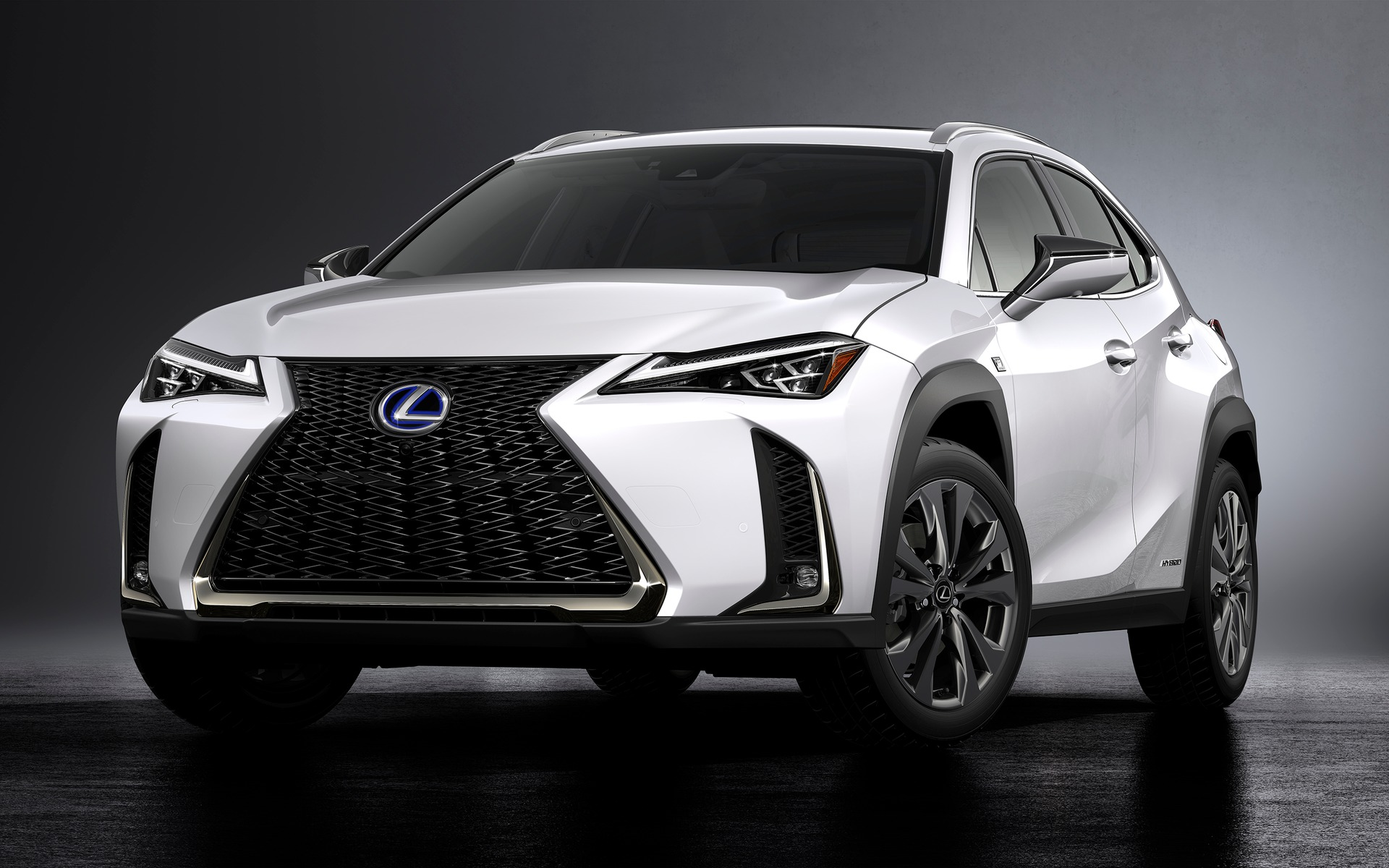 Lexus UX will make its Canadian debut in Edmonton.