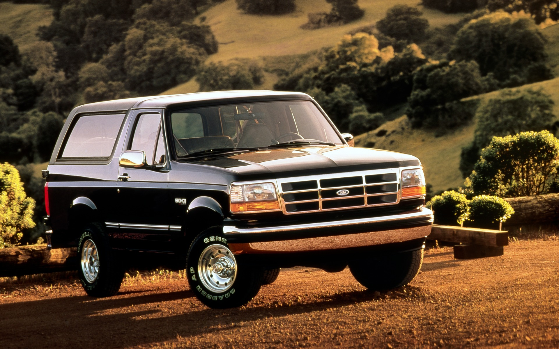 <p>Ford Bronco XL 1995</p>