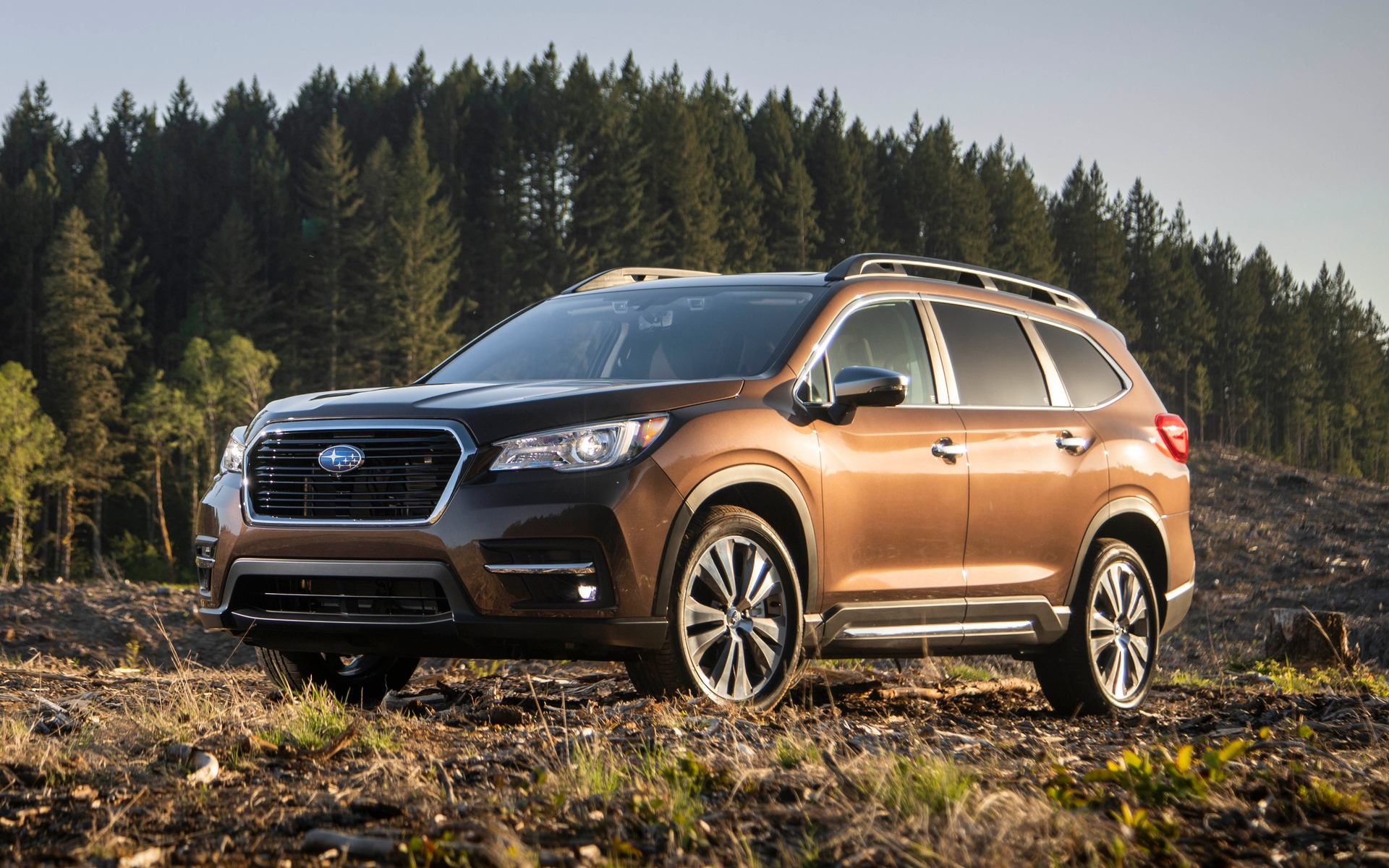 Le Subaru Ascent 2019