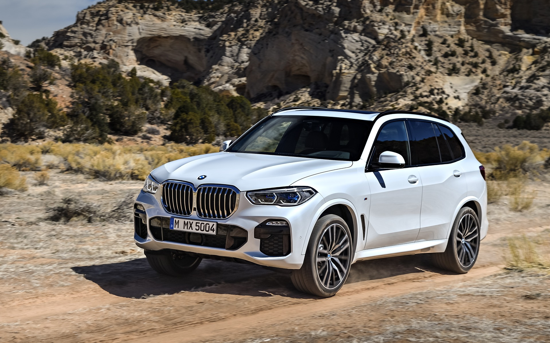 Top 10 New Features Of The 2019 Bmw X5 1 11