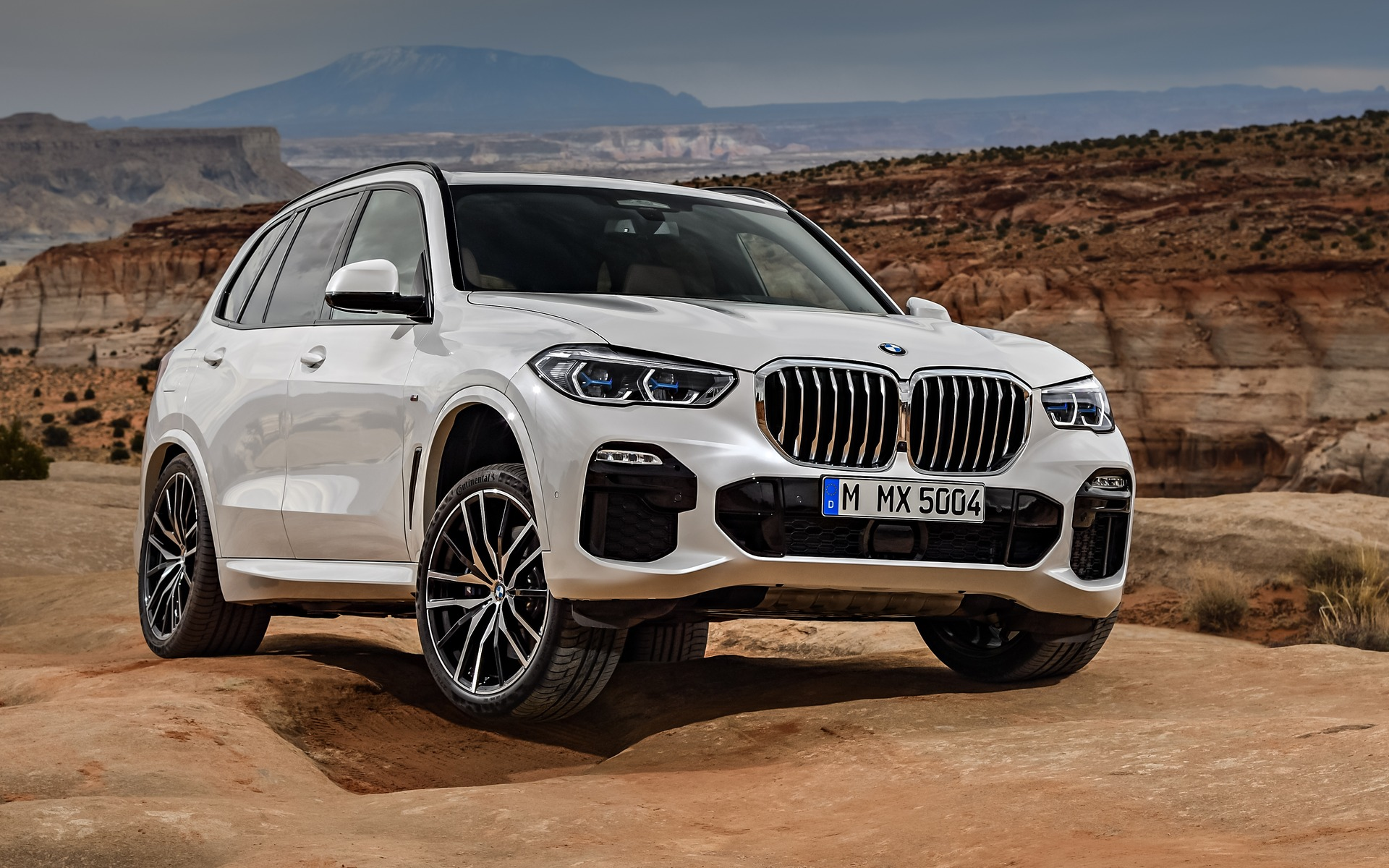 Top 10 New Features Of The 2019 Bmw X5 4 11