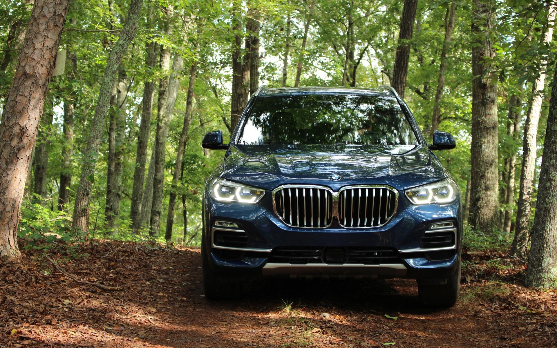 2019 Bmw X5 Technological Evolution 37 37