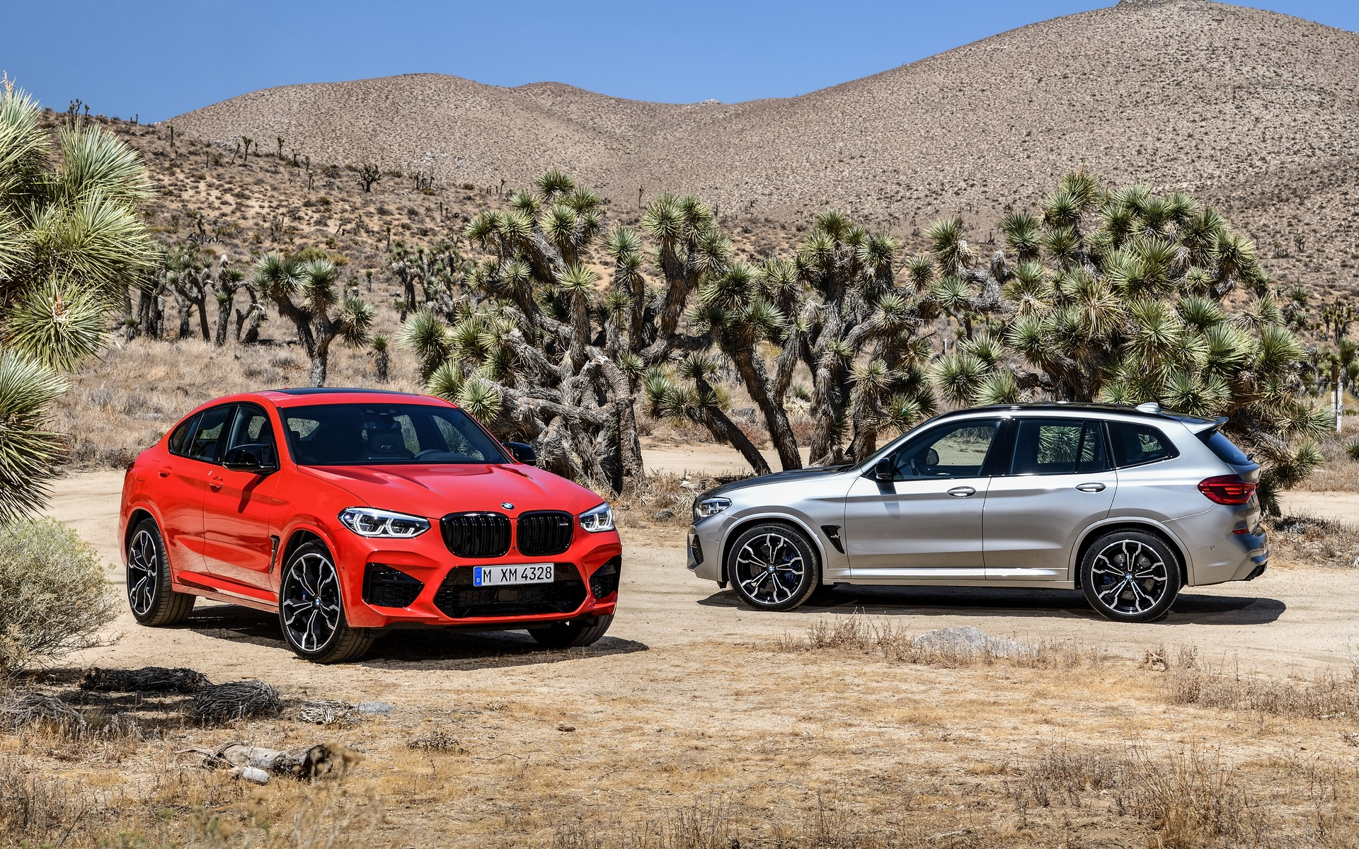 2020 BMW X3 M and X4 M: 503 Horsepower! - The Car Guide