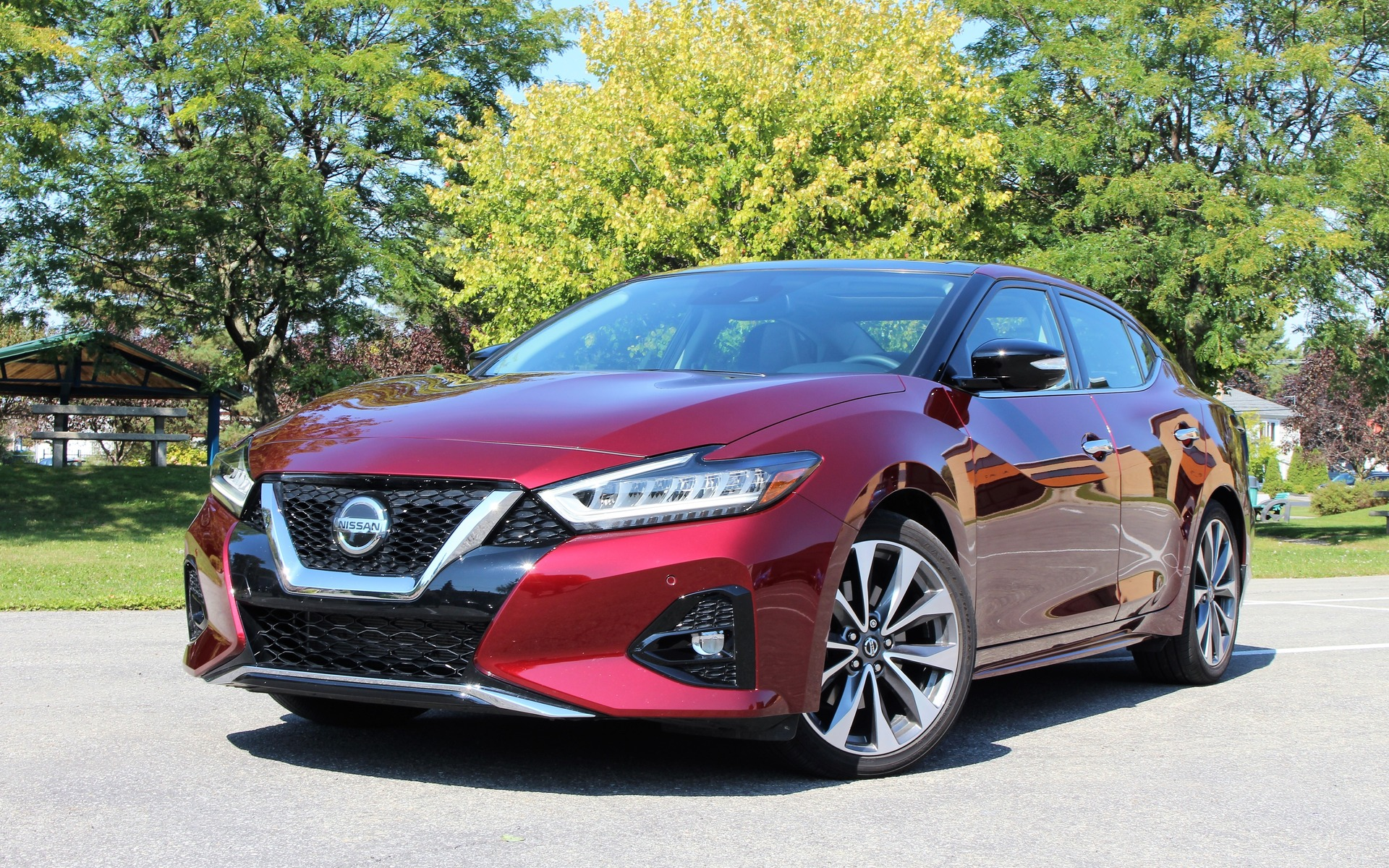 2019 Nissan Maxima The Salesman S Luxury Car The Car Guide