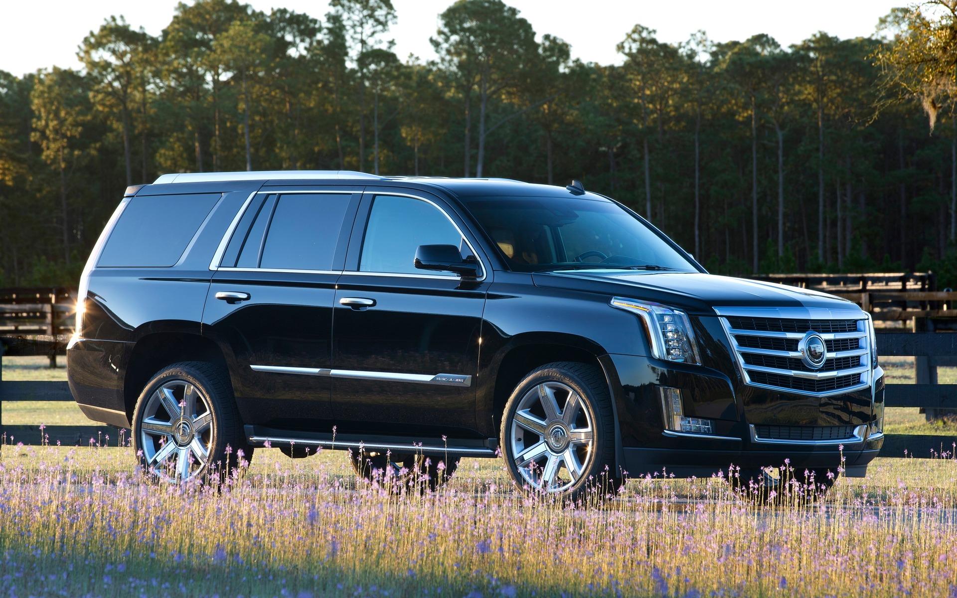 <p>2015 Cadillac Escalade</p>